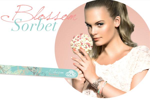 Blossom Sorbet Trend File, R70